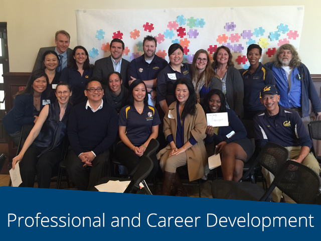 Professional and Career Development